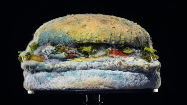 burger-king's-moldy-whopper-adds-grand-prix-wins-at-epica-awards-to-its-banner-year