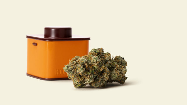 as-high-potency-cannabis-products-gain-popularity,-lawmakers-ask:-how-high-is-too-high?