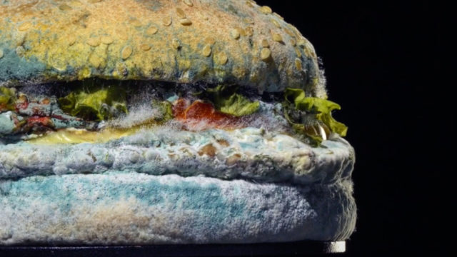the-flame-of-creativity:-a-look-at-the-burger-king-work-produced-during-fernando-machado's-reign