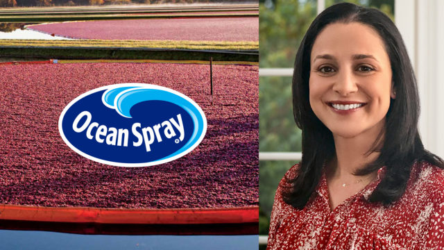 ocean-spray-hires-monisha-dabek-as-chief-commercial-officer