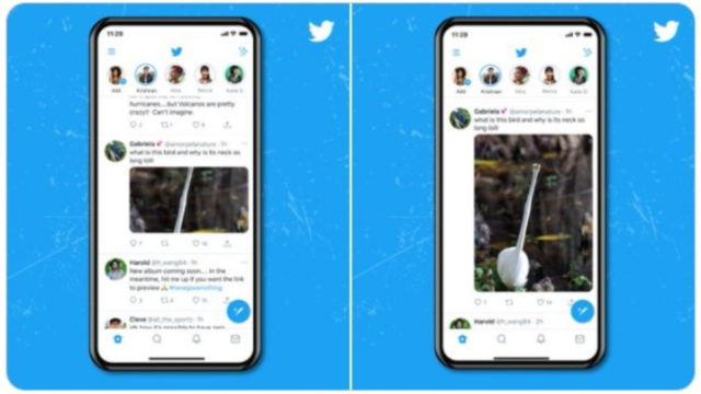 twitter-rolls-out-non-auto-cropped-images-on-android-and-ios