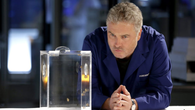 with-new-ncis,-fbi-and-csi-series,-cbs'-fall-is-all-about-the-franchises