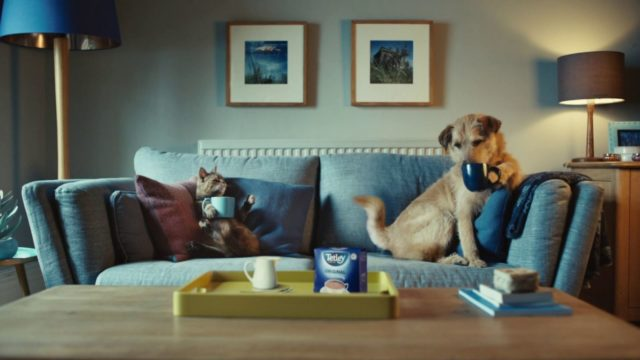 tetley-wants-more-young-people-to-drink-tea